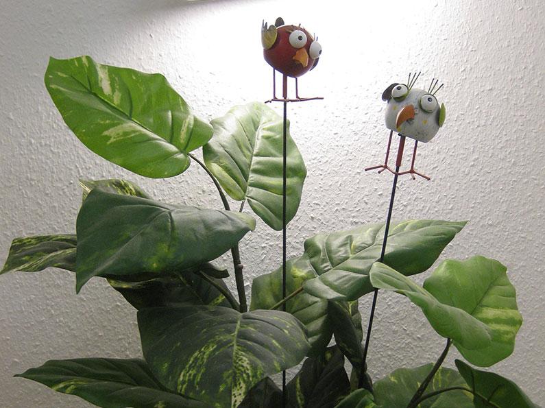 Pflanze mit lustigen Figuren - Ihr HNO in Bietigheim-Bissingen